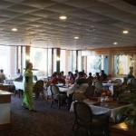 Beyond India Indo-American Cuisine